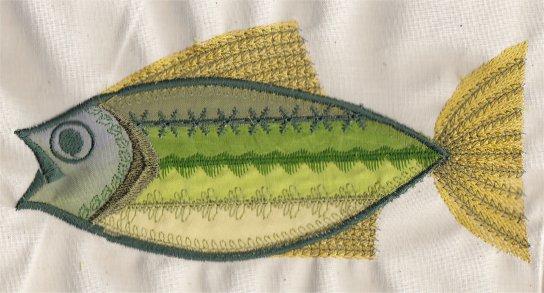 Patchfish