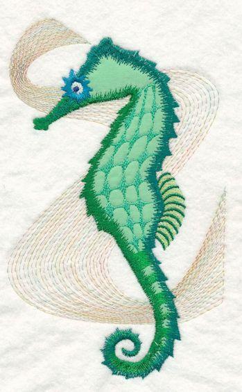 Seahorse50