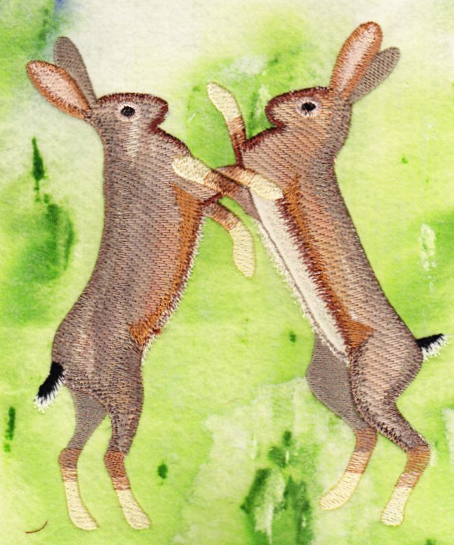 Hares2
