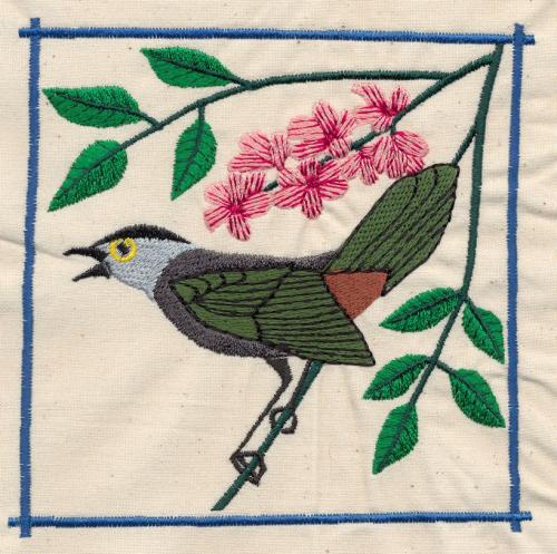 Chinesebird