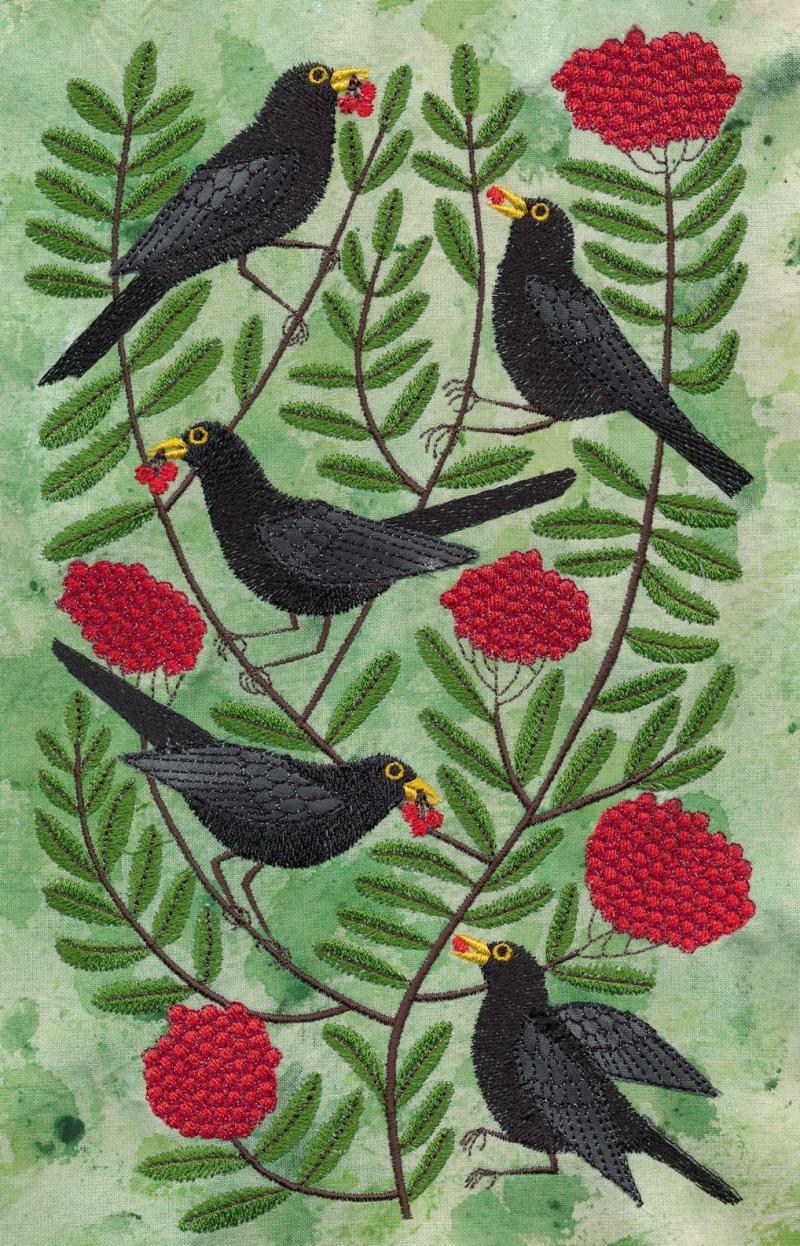 Blackbirdsa