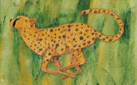 Cheetahsm